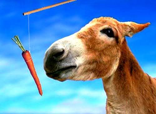 donkey-carrot-and-stick
